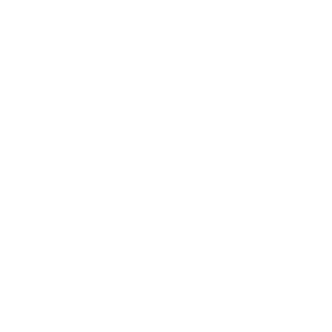 Launched the Assembly Show